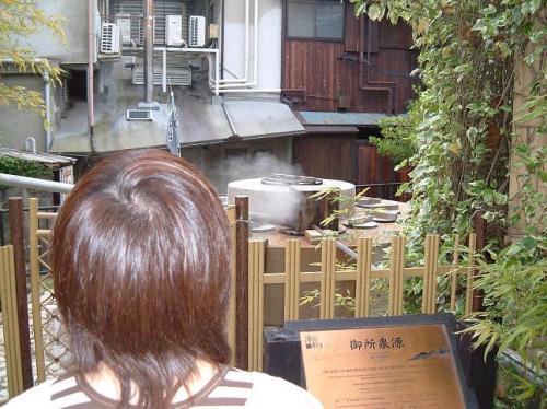 泉源のこんなに近くに、周囲の民家が立っているんですねぇ。