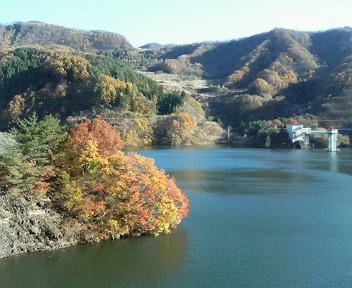 荒川ダムにて<br />エメラルドグリーンの湖水と<br />ゴールドの紅葉