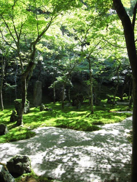 苔と砂利と木々が美しく配置されています。<br /><br />この繊細さは、日本人の感覚ですよね。<br />