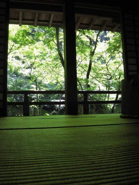 緑の葉を透して、室内にも緑色の日差しが差し込みます。<br /><br />住所:太宰府市宰府2−16−1<br />電話:(092)922−4053<br />時間:8時〜17時 無休 拝観料 200円