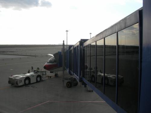 今からこの飛行機に乗ります!