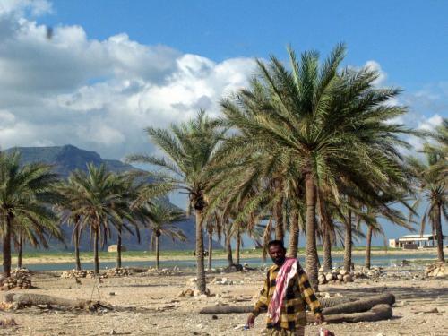 今日も道端から、子供達に手を振られ、<br /><br />浜辺に着いてみると・・・<br /><br />びっくらこいた!