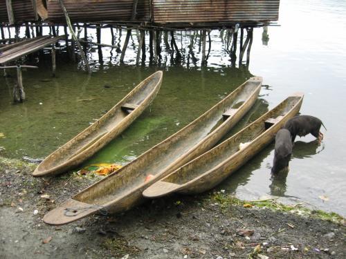水上生活者の乗り物