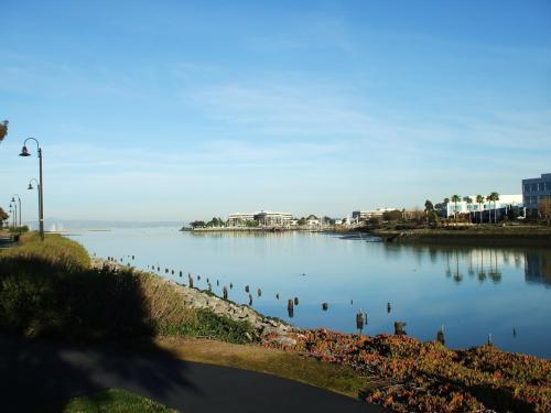 入り江に沿って遊歩道が整備されており、時折、散歩の人やジョギングの人と出会う。