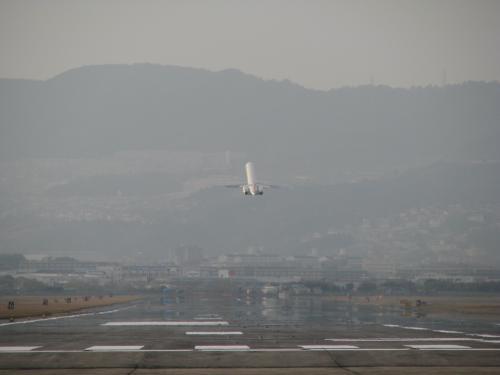 夕方、滑走路終端脇を流れる千里川の土手に寄ってみました。ココも伊丹空港では有名な場所です。<br />樹上すれすれを着陸機がかすめるので、迫力があります。