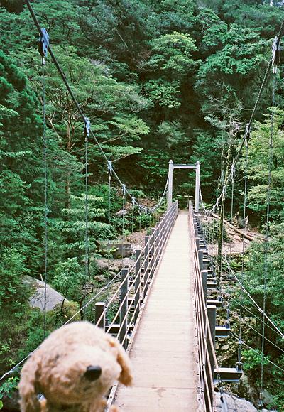 吊橋がありました。