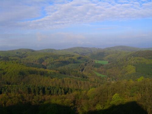 朝になりました。部屋から外を見ると今日もいいお天気〜(感謝!)。テューリンゲンの森がはるか向こうまで見渡せます。