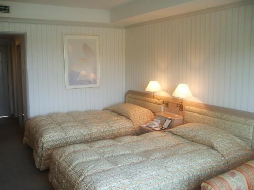 908号室のツインベッド。エキストラベッド(シングルベッド1本)を入れて定員3名になっているが、せいぜい大人2名までの広さの気がする。