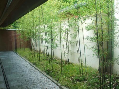写真の竹の庭の前は「鉄板焼きコーナー」になっている。