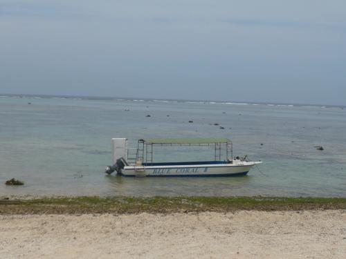 場所は白保海岸。<br /><br />世界でも有数のサンゴの群生地だそう。<br /><br />時間は14時くらいで、思いっきり引潮。<br />どこまでも遠浅。<br /><br />このボートで沖まで出ます。<br /><br />ちなみに、このツアーも私たち2人以外は、1人参加の日本人男性と、外人男性2人。<br />とっても少人数。(^^)