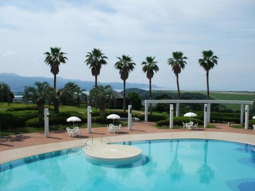 このテラスからの眺めが素晴らしい。ガーデンプールと背の高い椰子、そして、遠くに海が見える。