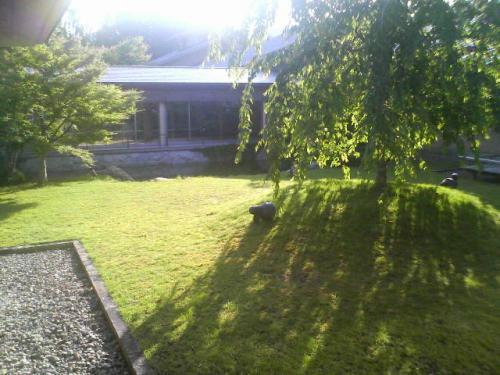 中庭もとても綺麗。