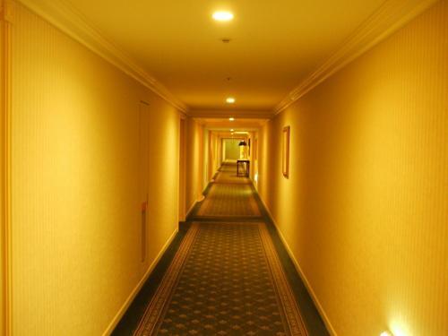 今日の部屋は8階の815号室。写真:8階の廊下