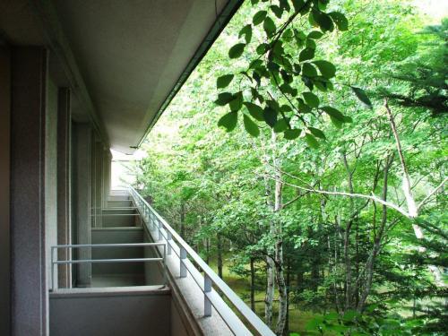 バルコニーに出てみると中庭の木々が生い茂っている。木々の間から中庭の池が見える。