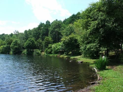 女神湖の奥まった所に平坦な芝生地帯があり、大きな木々に囲まれている。日陰に入れば実に涼しい。<br />お弁当、昼寝、読書に最適。湖畔を渡る風が「冷たい」ので長袖が必要。