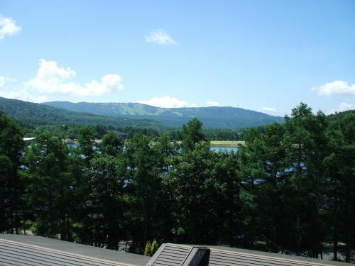 客室のバルコニーからの眺め(写真)。背の高いカラマツ越しに女神湖が見える。