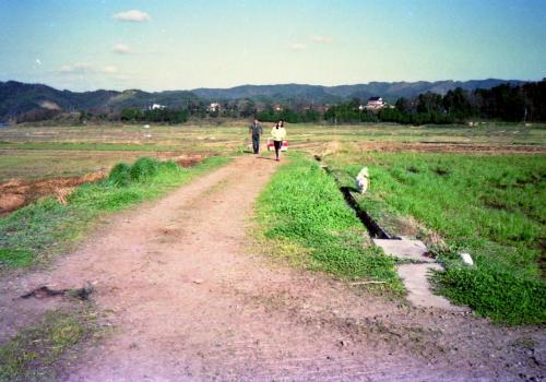 ■ポピーのお散歩①<br />三朝温泉を観光している間、2代目ポピーは車で留守番。<br />ちょっとノビノビさせてやろうと、途中で見つけた自然たっぷりの場所で車を停めた。