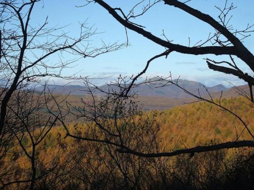 私のコテージのバルコニーからの眺め(写真)。夏に来た時には緑の木々で視界がさえぎられていたのであるが、今回は遠くまで良く見える。