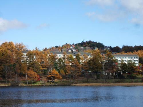 ホテルアンビエント蓼科のアップ写真(写真)。カラマツの背丈が高いので、ホテルの4階に宿泊しないと部屋からの湖の眺めがさえぎられる。