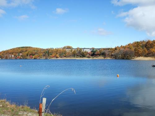 女神湖は周囲約2kmの人造湖で、南側は長い土手になっている。対岸にカラマツで囲まれた「ホテルアンビィエント蓼科」(写真)が見える。