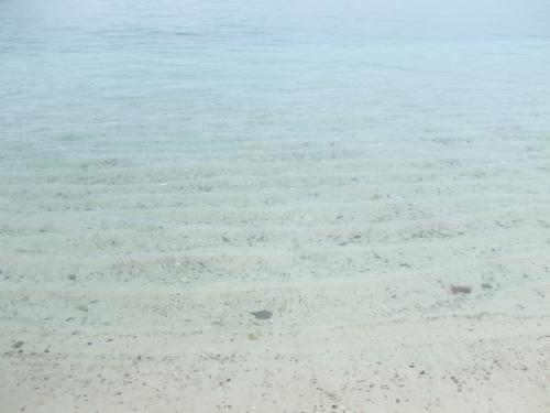 白良浜♪<br />台風前でお天気はあんまりだったんだけど、やっぱりキレイ!砂は真白だし水は透明。<br />日本(しかも近畿)も捨てたもんじゃない!!