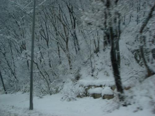 実は野球の試合で来たのですが、この天気では…<br /><br />ここから仙台まで移動します。<br /><br />山形と宮城の県境、笹谷峠にさしかかるとこんな雪ですが、ひと山越えると…