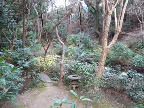 参道の両側には、自然が残る森が広がっています。