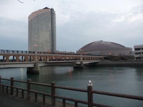 川向こうにJALシーホークとヤフードームがはっきりと見えます。
