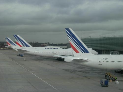 成田から 約 13時間。<br />ロシア・シベリアの 上空を 飛んで、エール・フランス機は、 <br />フランスの パリ・シャルル・ド・ゴール 空港へと、 到着〜。<br /><br />先週は、 パリを はじめ、欧州は 大雪に 見舞われた。(日本の ニュースでも 報道!でした)<br /><br />今日も、眼下に 広がる! パリの 郊外は、 雪が 沢山 残っている 様・・・だが、<br /><br />この先 飛行機は トランクの 荷物は <br />無事、 モロッコへと 到着するだろうか!?。<br /><br />