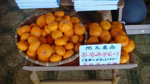店内の「寿太郎みかん」は、食べ放題。