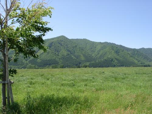 夏の前森高原