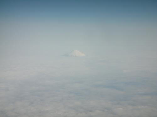 福岡⇔東京の機内で楽しみなのは..富士山を見ること。<br />雲の絨毯からちょいと見える富士山。