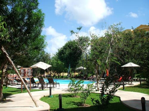 プールの周りにはチェアーが沢山置いてあり、数人の客がくつろいでいる。