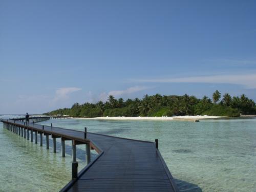 こちらの島はビーチヴィラと水上コテージがあるのですが、私は前の日水上コテージに泊まっていました。水上コテージは「オーシャンヴィラ」と呼ばれ別リゾートと考えられています。<br />この長い桟橋を渡り、本島であるフドゥランフシに向かいます。