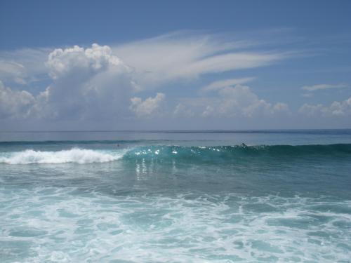 数名のサーファーが海に入っていました。<br />結構大きく荒い波がきていました!