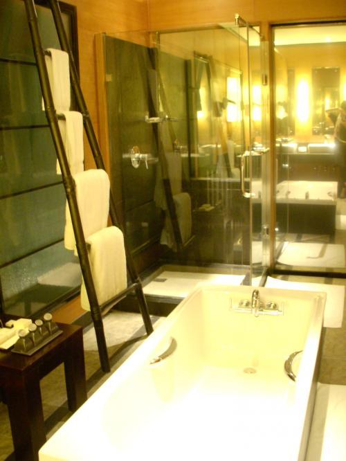 左手にははしごのようなタオルハンガーがあります。<br />その奥がガラス張りのシャワールームになります。<br /><br />シャワーはこちらも今流行りのレインシャワーでした。<br /><br />その奥が鏡のようになっているのですが実は扉でして外はサンデッキになっています。<br />中から見ると鏡、外からは中が丸見えなのです。<br />これって逆であるべきでは、と思ってしまいました。<br /><br />夜間でも中が明るいと外から丸見えなのでちょっと不安で真っ暗にしてシャワーしてしました。(汗)