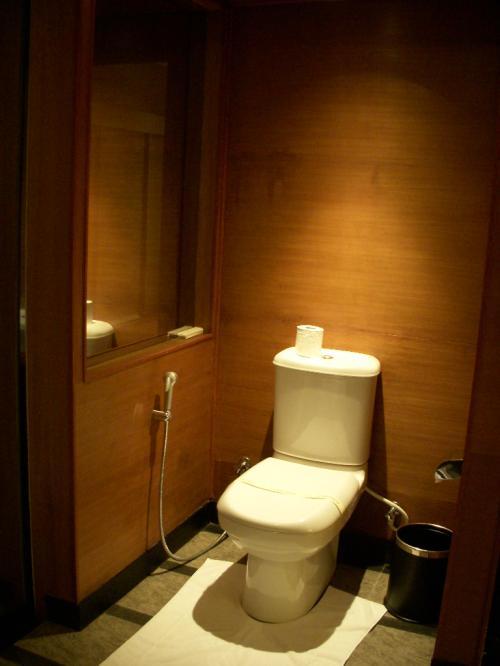 バスルームの中にあります。<br />おトイレです。