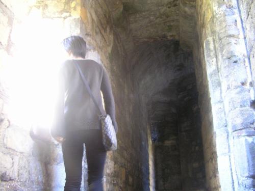 お城の中を見学することが出来ます。<br />塔の上に上ったり、城内にある博物館を楽しむことも出来ます。