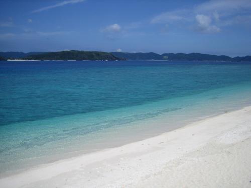 阿嘉島のビーチ「ニシハマビーチ」<br />キレイのひとことでは言い表せないほど美しい!<br /><br />ダイビングはしない私ですが、シュノーケリングで十分満足できます。たくさんの魚達が間近に見れて、ちょっと怖いくらいに美しい海の世界・・。<br /><br />