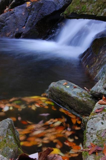 この滝が見えるほうが参道なのですが左手に東屋らしきものがあります。でも滝は良く見えない場所になりますので、渓谷を見たいとか休憩したいとかでなければ無駄足になります。<br />