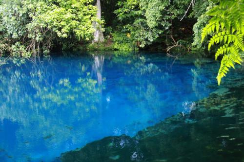 シャークベイ・ブルーホール!<br />サント島に5つあるブルーホールの中で最も有名。<br />なんとこの美しい色!吸い込まれそう・・