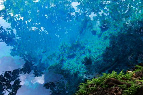 エスピリッツサント島にあるブルーホール。ラピスラズリーの様な神秘的な青い湧き水によって出来た小さな湖。最近ではフジTVの世界の絶景・100選に選ばれた。透明度が高く、深い水底まで見える。このサント島にはブルーホールが5ヶ所あるが、有名なのは緑に囲まれたシャークベイ・ブルーホールで水深が21mもあるが水底がみえる・・。「空が落ちてきた湖」とも表現されている。 <br />