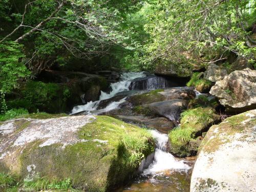 道路脇の空いているスペースに車を置いて、渓流に近付いてみます。<br />「唐音の滝」の上流部分も渓流瀑になっていました。