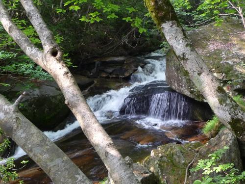 岩盤上にいくつかの甌穴も見ることができます。