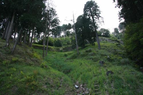 それから、大野城の遺構を探していると、百間石垣を見つけました。