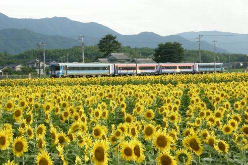 阿波池田へ向かう、アイランドエクスプレス四国(団体臨時列車)をバックに