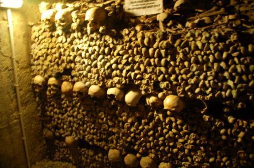 積み上げられたたくさんの骨。このような形で積み上げられた骨がおよそ一キロに渡ってずっと続いている。