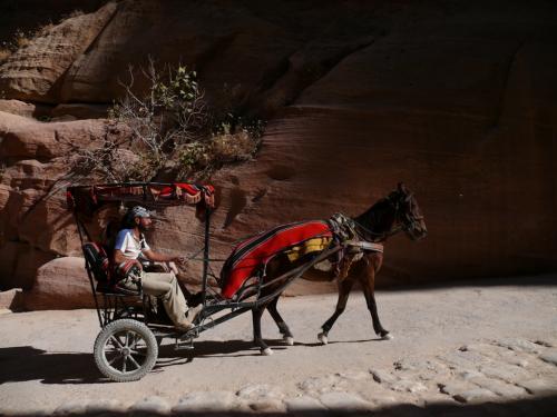 狭いシークを馬車が走ります。<br />お客さんを乗せていないときはかなりスピードを出して飛ばしてくるのでちょっと危険?!