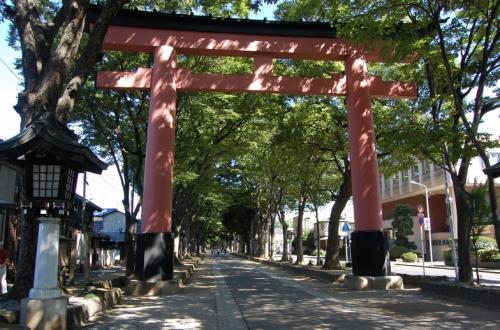 大宮駅まで湘南新宿ラインで行って、<br />商店街を通り抜け、氷川神社の鳥居まできました。