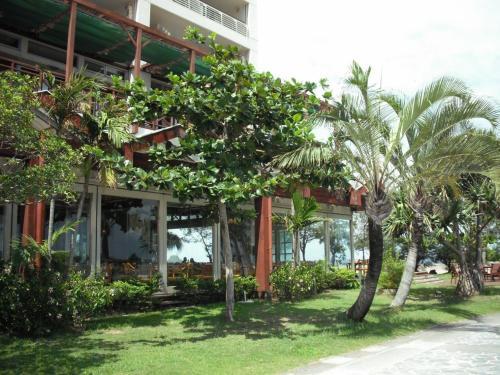 プライベートビーチ側から見たセイルフィッシュカフェ(写真)南国特有の木々と緑の芝生が美しい。